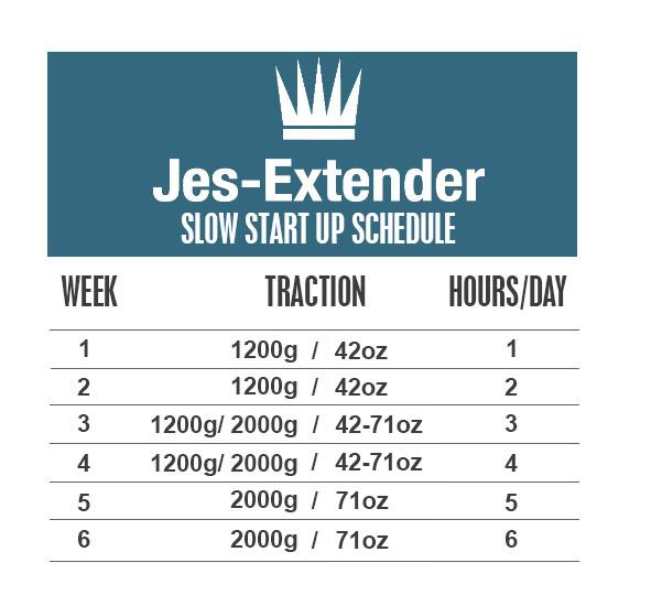 JES Extender Programme